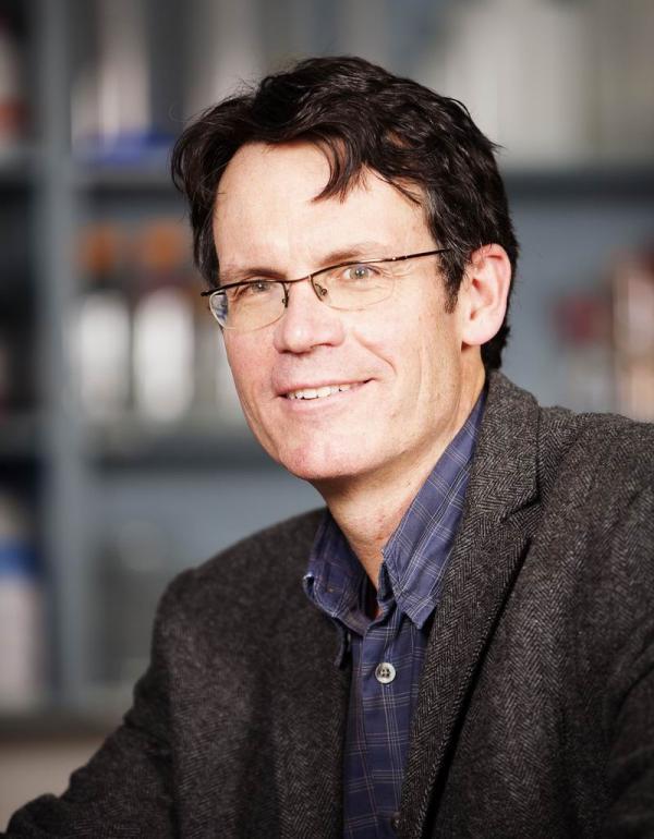 David LeBrun