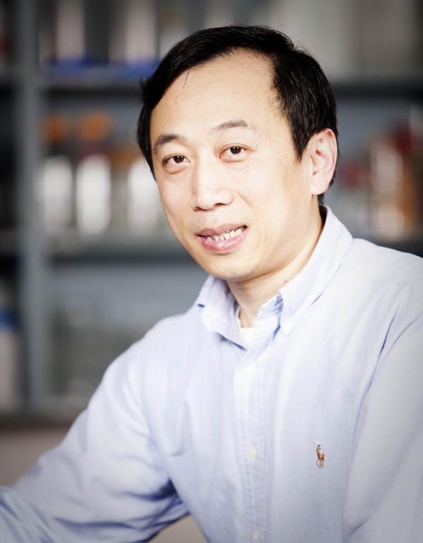 Xiaolong Yang